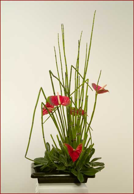 Contemporary Displays - Silk Flower Arrangements - Floral