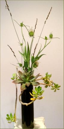 Succulent Ikebana in vertical holder