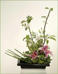 Three sisters ikebana flower arrangement A.