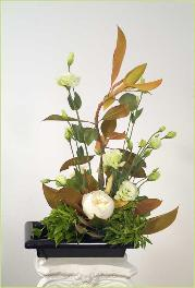 The Tiburon Ikebana, 2007