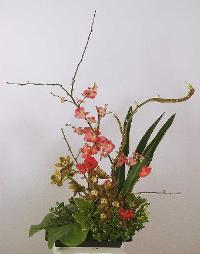 ikebana red green