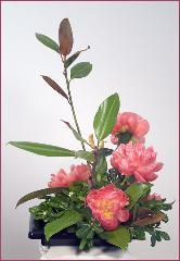 peonies ikebana with branch