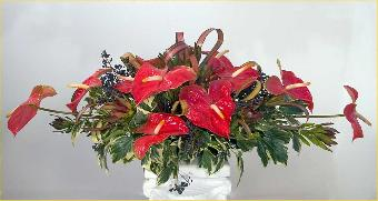 Hardy centerpiece for holiday Dinner and reception Buffet