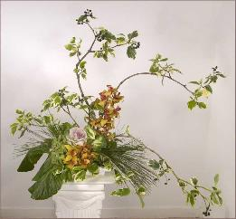 branch ikebana with cymbidium and kale -- about $250 (need notice)