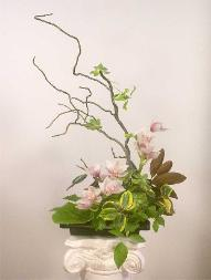 Branch Ikebana about $125 (need notice)