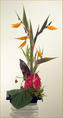 bird of paradise ikebana arrangement with anthurium