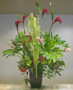 Green amaranthus cascades seven feet, top to bottom -- Yukiko.
